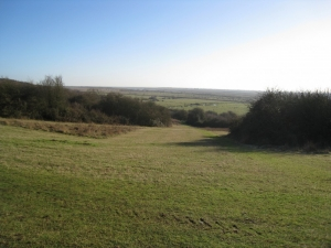 Hadleigh Park looking South, J Biggs